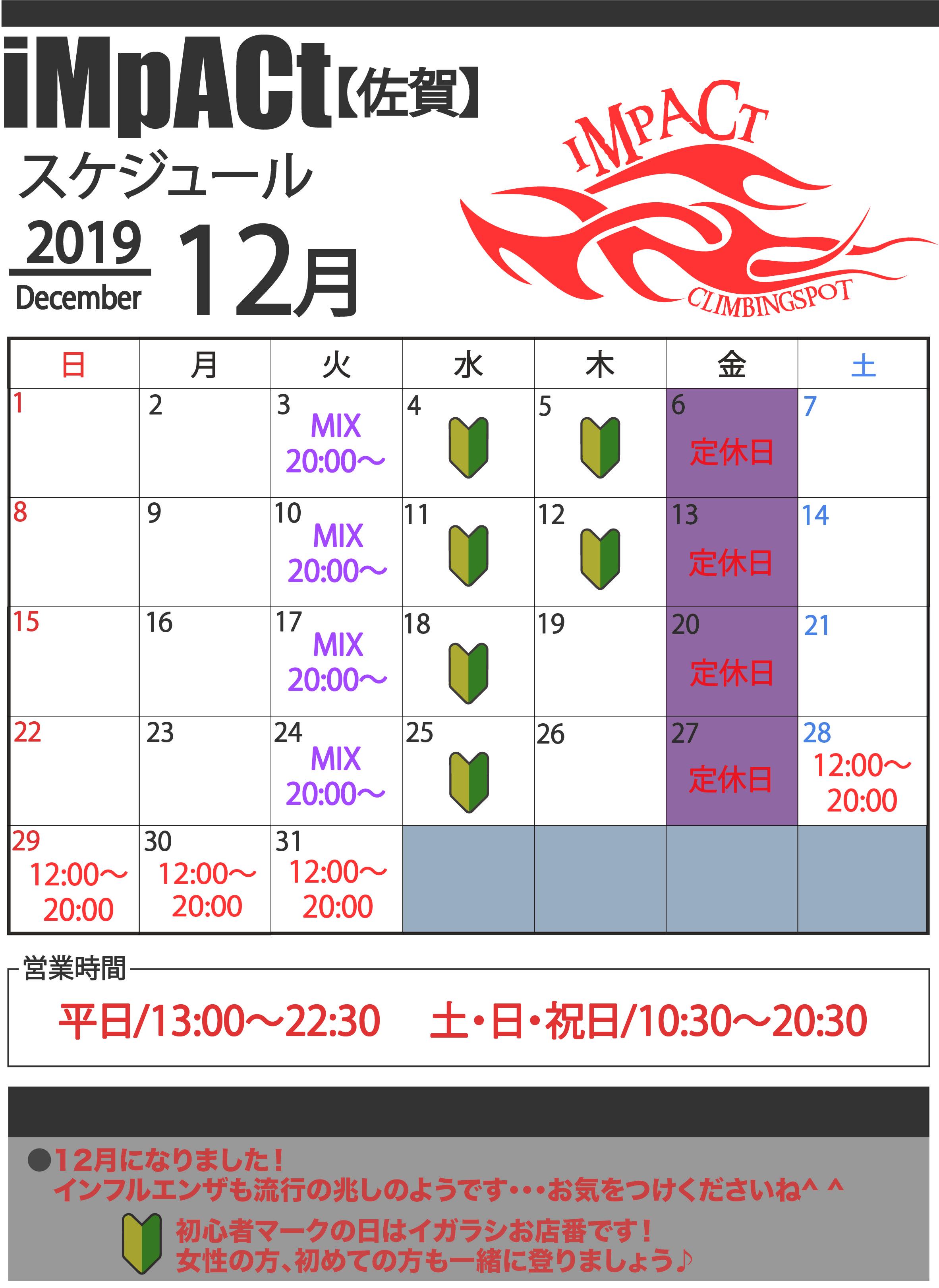 カレンダー佐賀2019-12.jpg